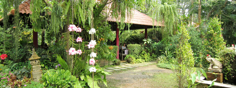 Februar: Thailand