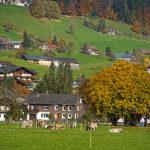 Fotoclub Bregenzerwald22