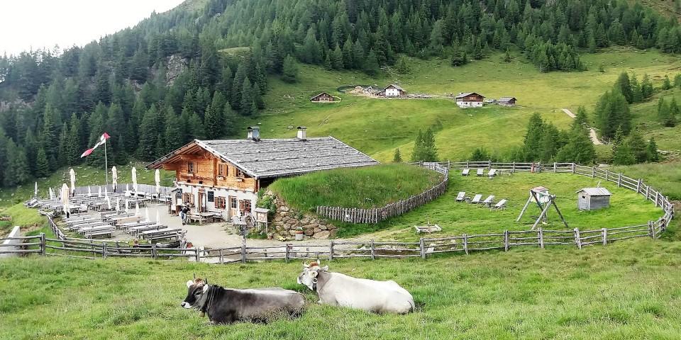 Wanderwoche Vinschgau