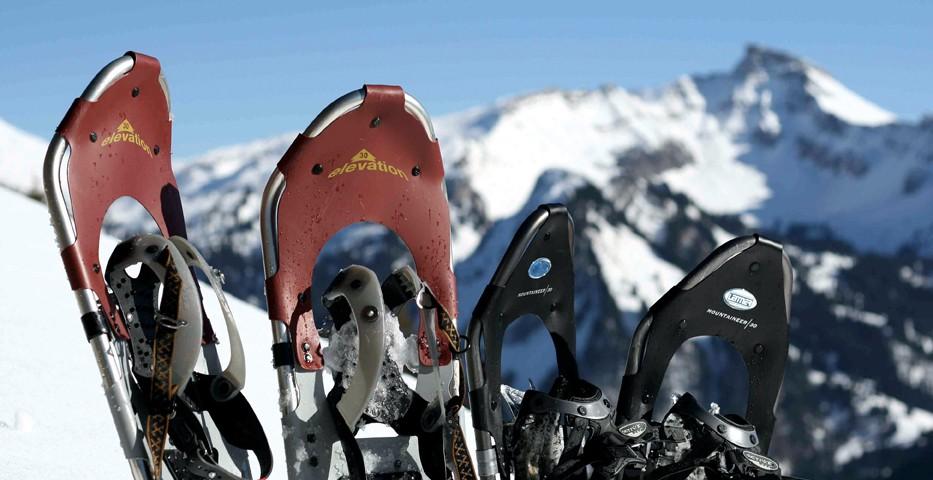 Bergtourenprogramm 2019