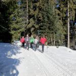 Winterwanderung zur Weißenfluh