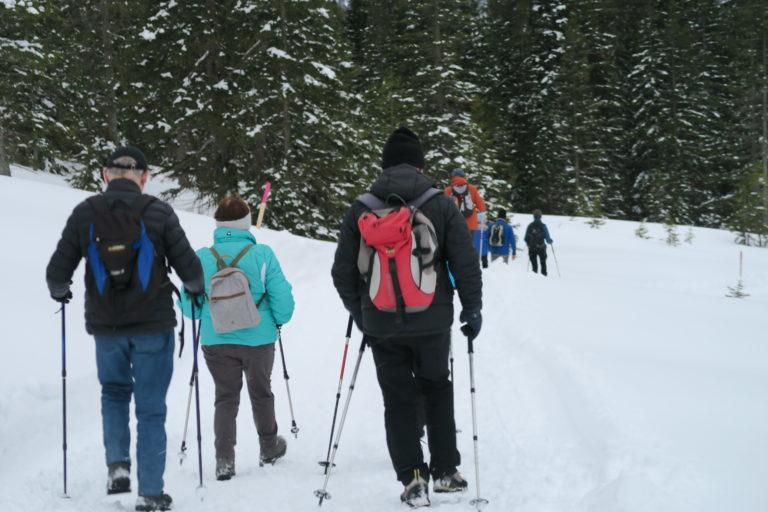 Winterwanderung nach Gapfohl - Image 8