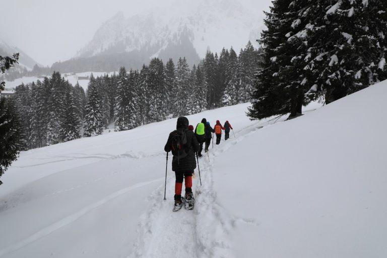 Schneeschuhwanderung in Gargellen - Image 5