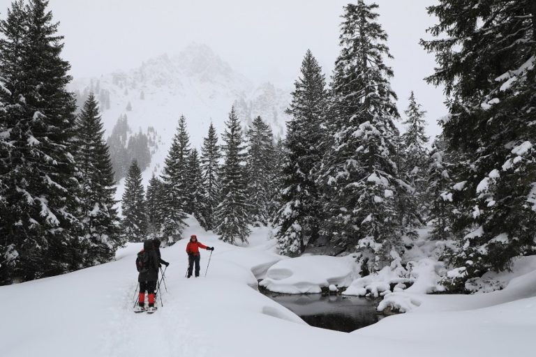 Schneeschuhwanderung in Gargellen - Image 8