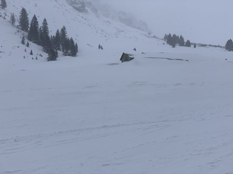 Schneeschuhwanderung in Gargellen - Image 21