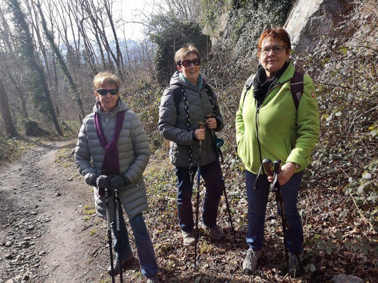 Wanderung Burgruine Neuburg 4.3.2020 - Image 8