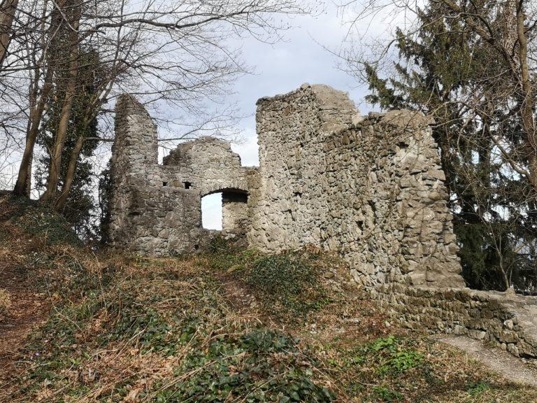 Wanderung Burgruine Neuburg 4.3.2020 - Image 11