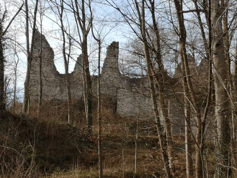 Wanderung Burgruine Neuburg 4.3.2020 - Image 21