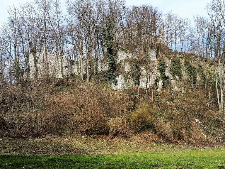 Wanderung Burgruine Neuburg 4.3.2020 - Image 22