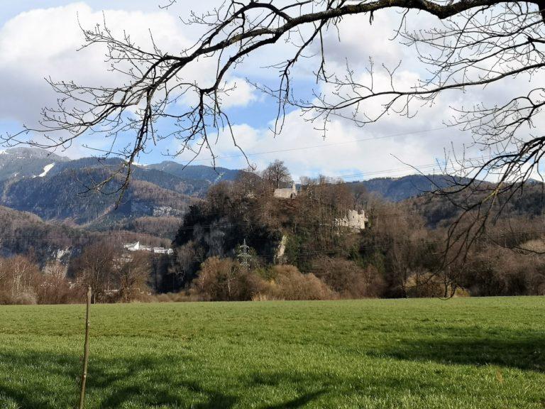 Wanderung Burgruine Neuburg 4.3.2020 - Image 36