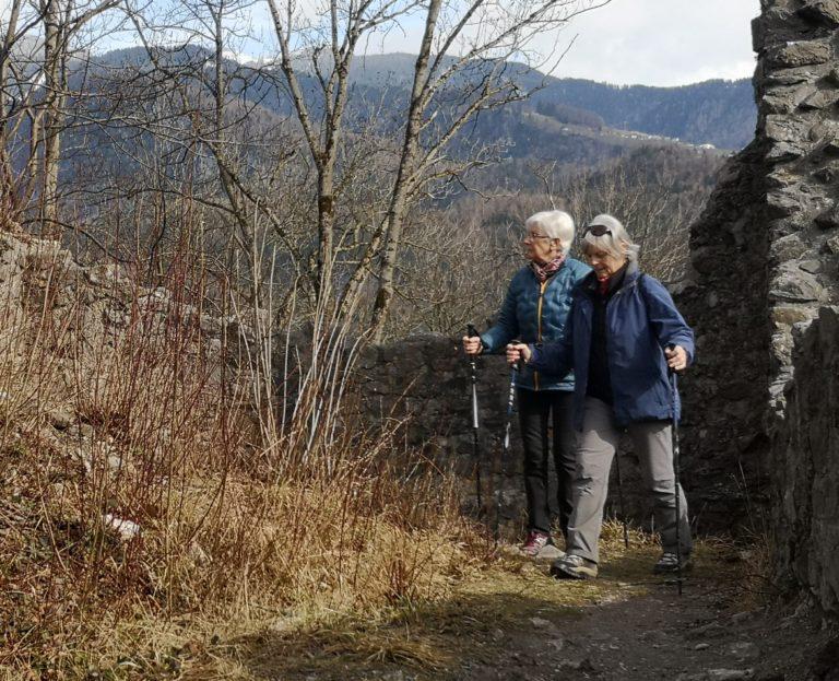 Wanderung Burgruine Neuburg 4.3.2020 - Image 20