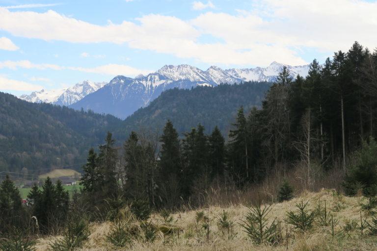 Rundwanderung in Göfis - Image 3