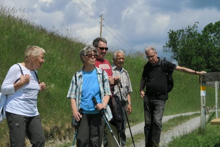 Wanderung von Übersaxen nach Göfis am 28. Mai 2020 - Image 8