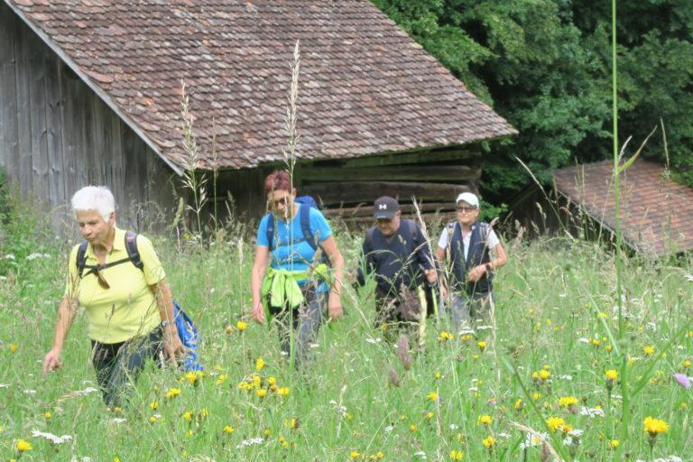 Wanderung von Braz nach Bludenz - Image 7