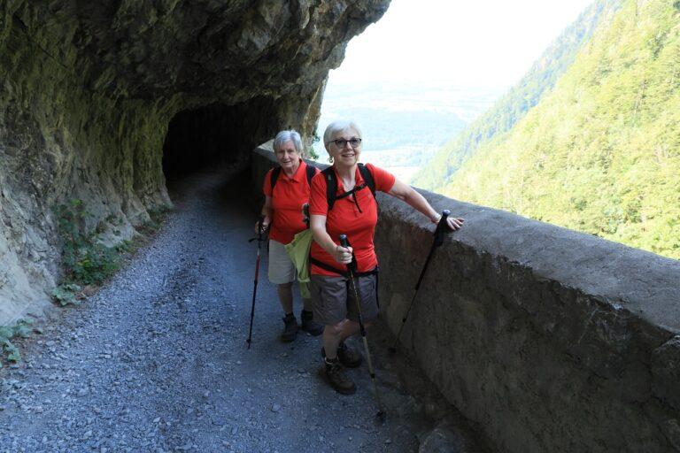 Britschli-Alp Rohr-Alp Eidenen - Image 8