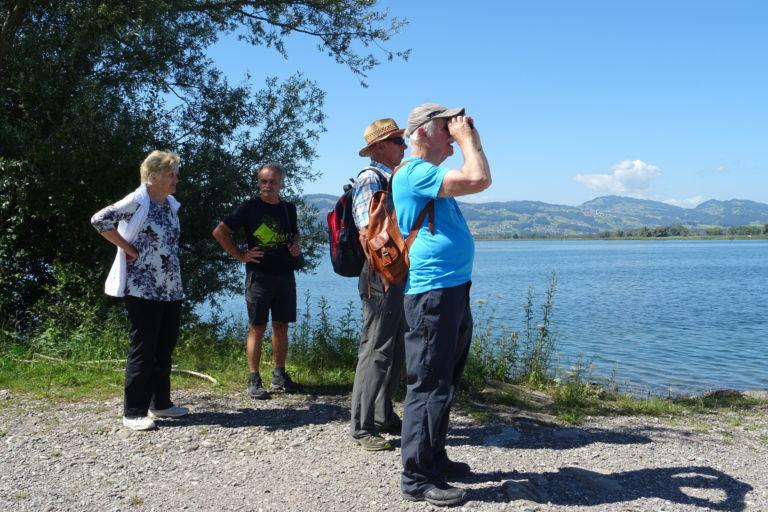 Wanderung zur Lagune Fußach - Image 7