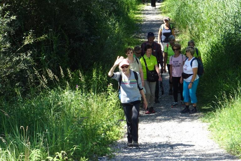 Wanderung zur Lagune Fußach - Image 12