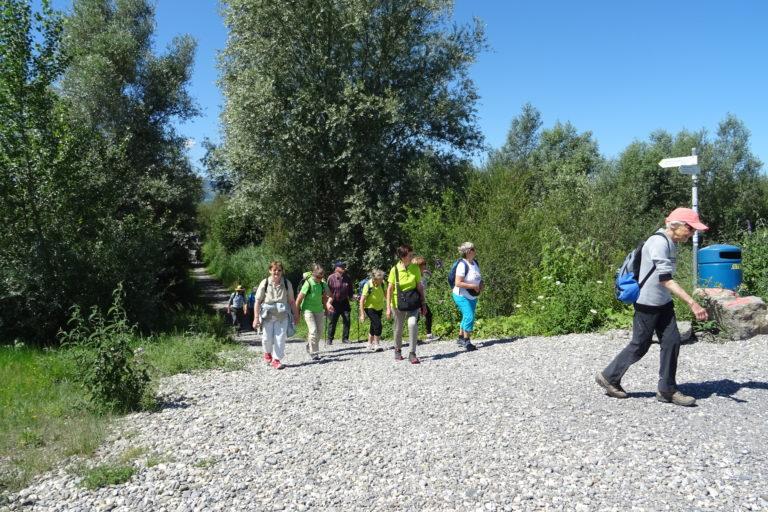 Wanderung zur Lagune Fußach - Image 13