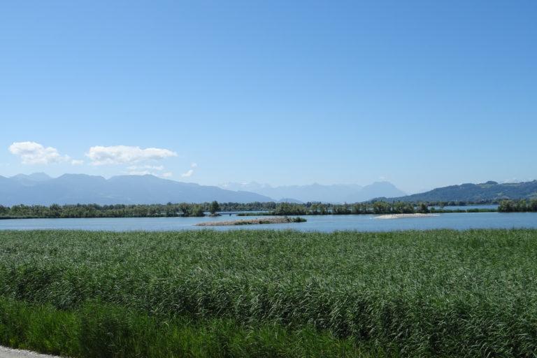 Wanderung zur Lagune Fußach - Image 14