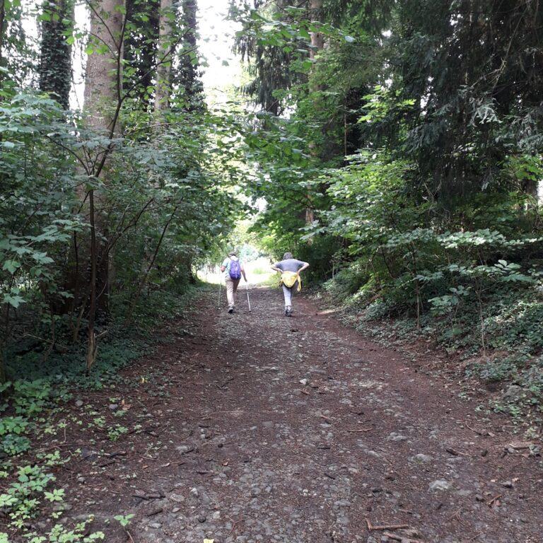 Wanderung nach St. Corneli - Image 2