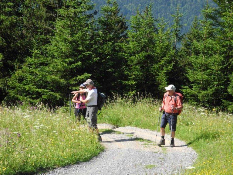 Höchster Senioren auf Themenwanderung in Bartholomäberg - Image 2