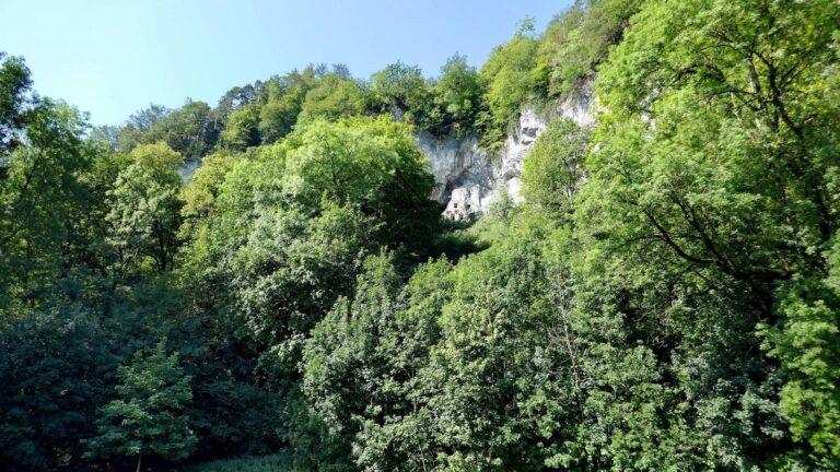 NSG Wichenstein und Felsenburg Wichenstein - Image 3