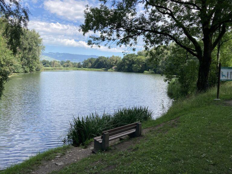 NSG Wichenstein und Felsenburg Wichenstein - Image 7