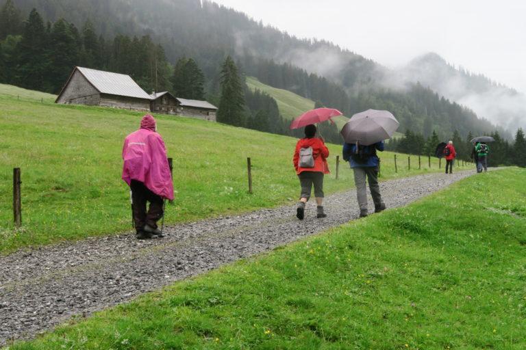 Wanderung vom Bädle zur Leue Alpe - Image 2