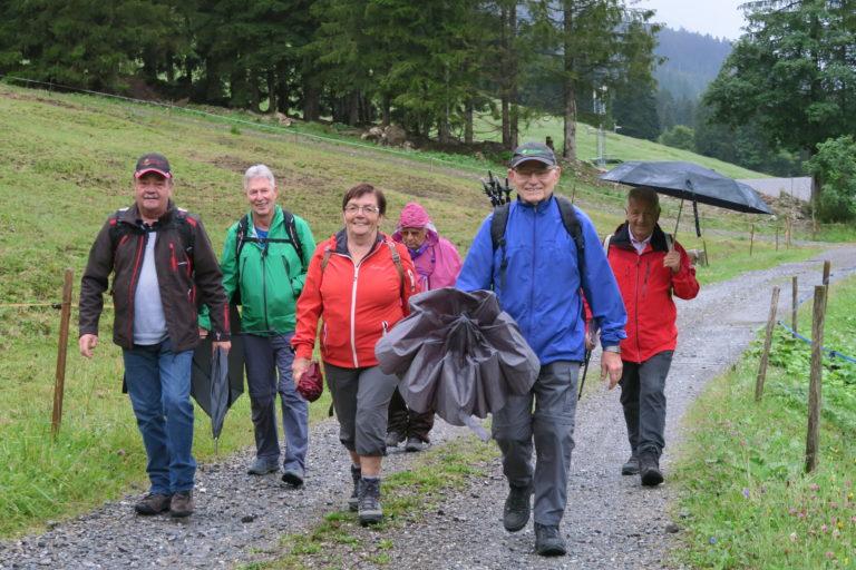Wanderung vom Bädle zur Leue Alpe - Image 4