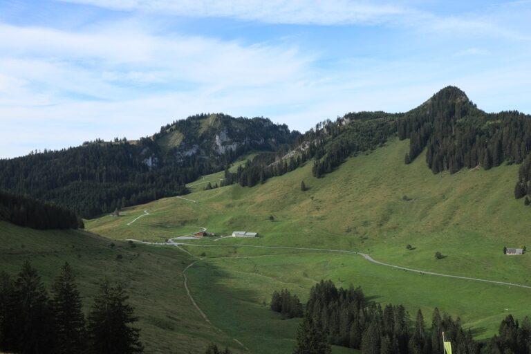 Schuttannen – Staufen - Image 1