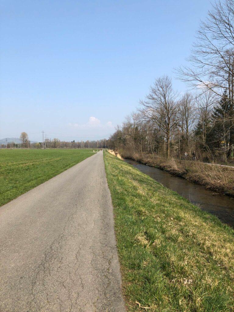 Werdenbergersee - Image 2