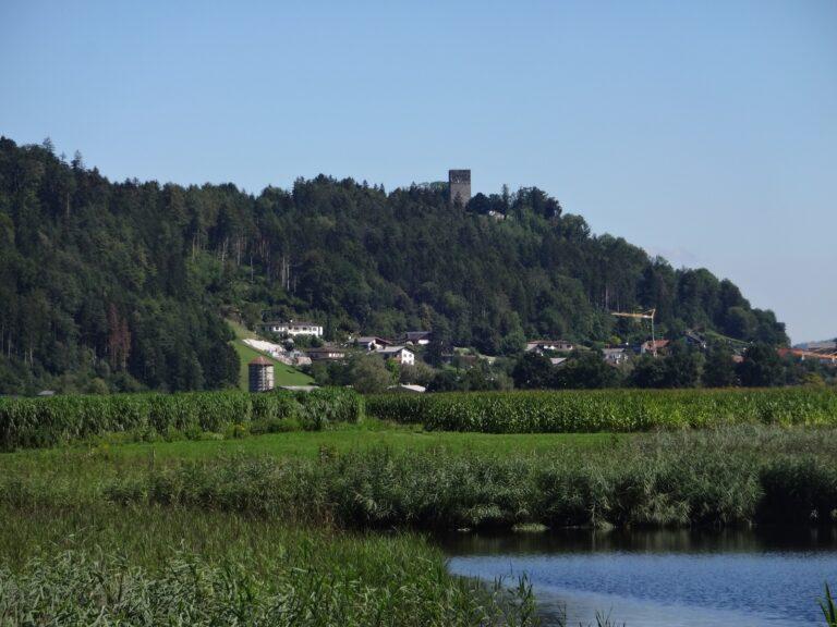 Alte Holzbrücke Vaduz - Image 14