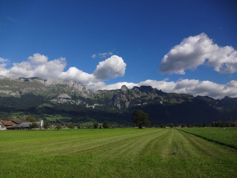 Werdenbergersee - Image 5
