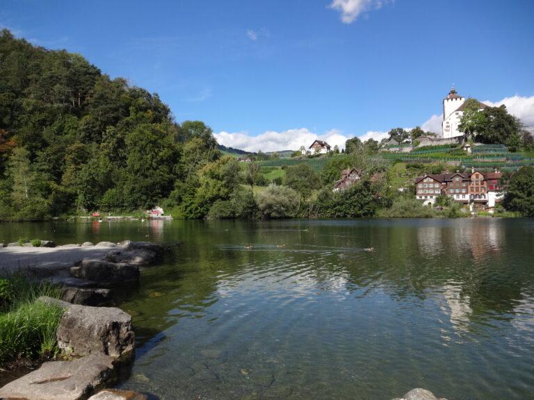 Werdenbergersee - Image 7