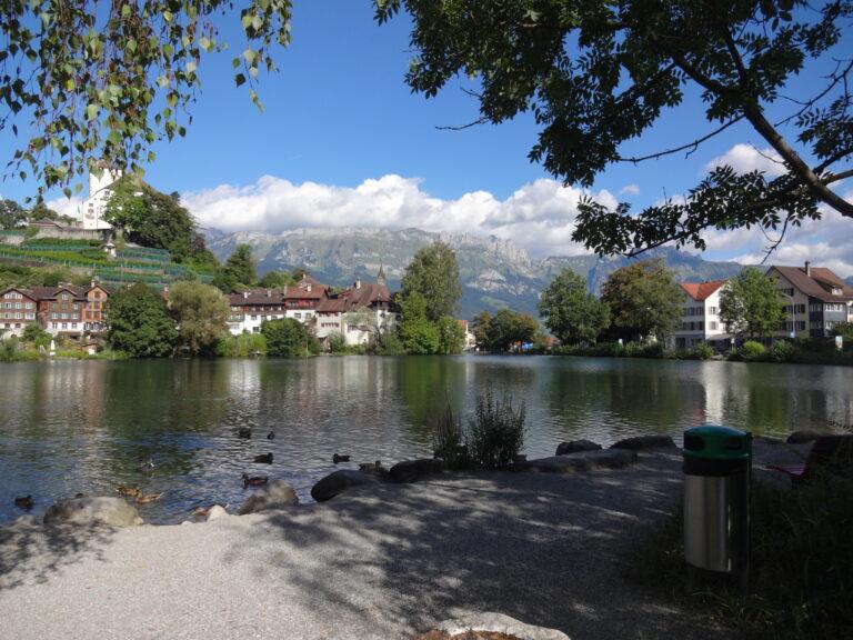 Werdenbergersee - Image 10