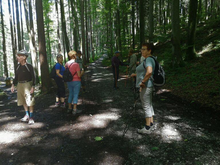Wanderung vom 5. August 2020 - Image 5