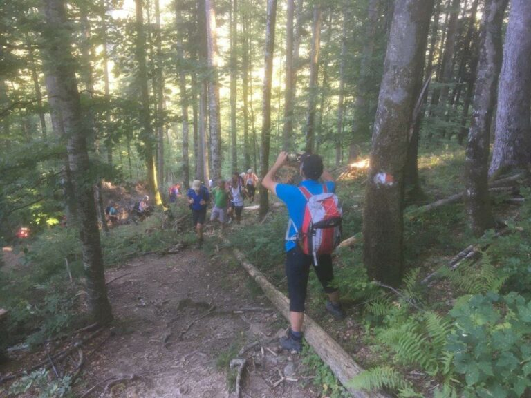 Wanderung auf die Mörzelspitze - Image 1