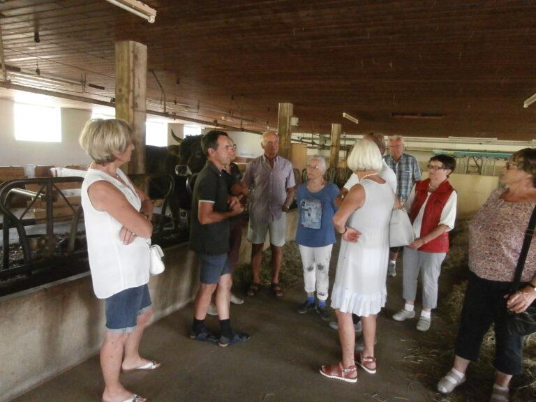 Ausflug zum Biobauernhof Lingenhel - Image 5