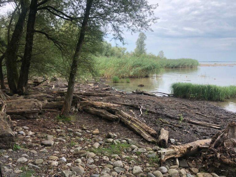 """Ufer Natur"" – Pfad - Image 15"