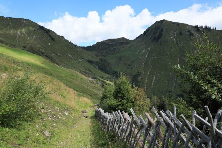 Gaßneralpe und Plansottalpe - Image 19