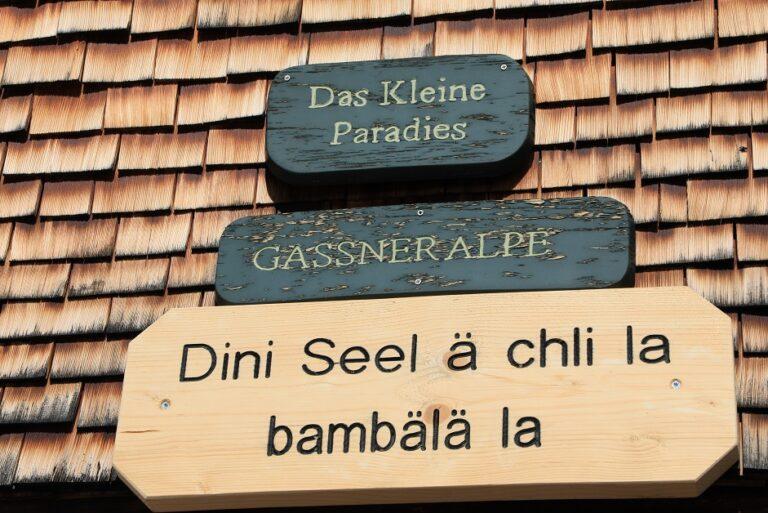 Gaßneralpe und Plansottalpe - Image 20