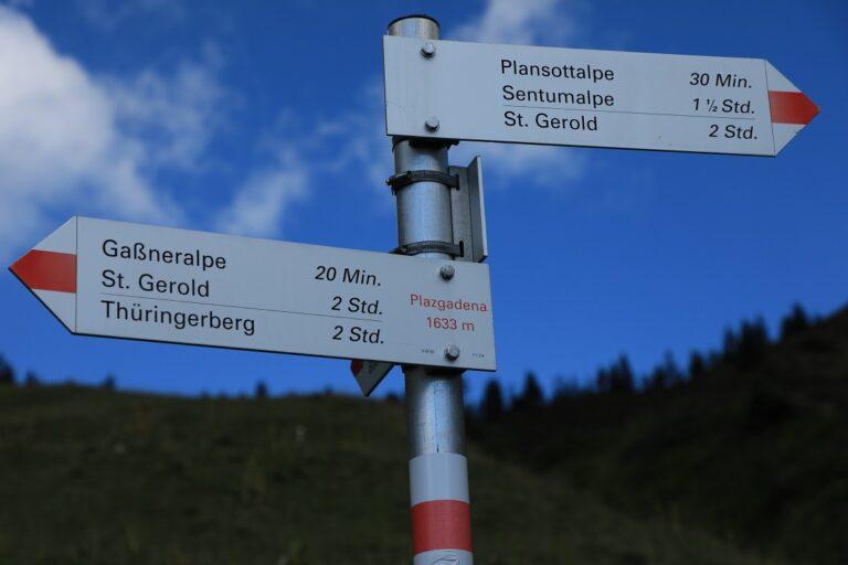 Gaßneralpe und Plansottalpe - Image 36