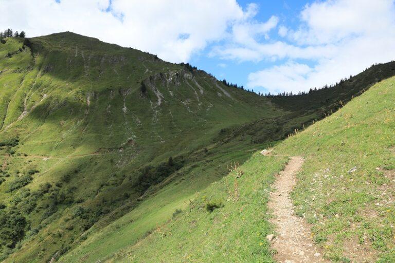 Gaßneralpe und Plansottalpe - Image 39