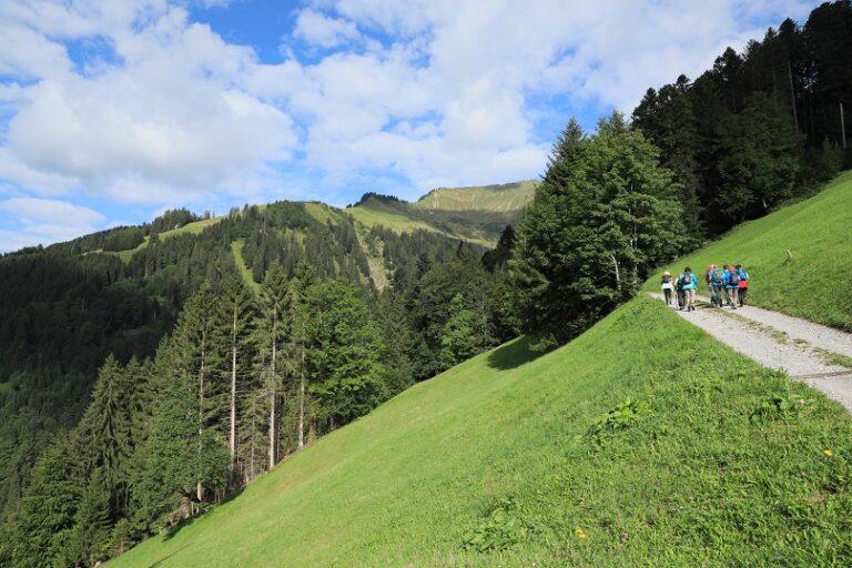 Gaßneralpe und Plansottalpe - Image 6