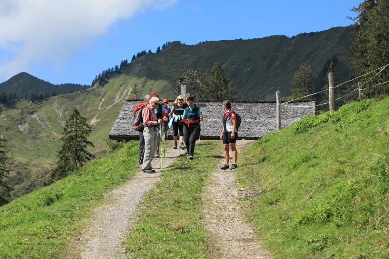 Gaßneralpe und Plansottalpe - Image 50
