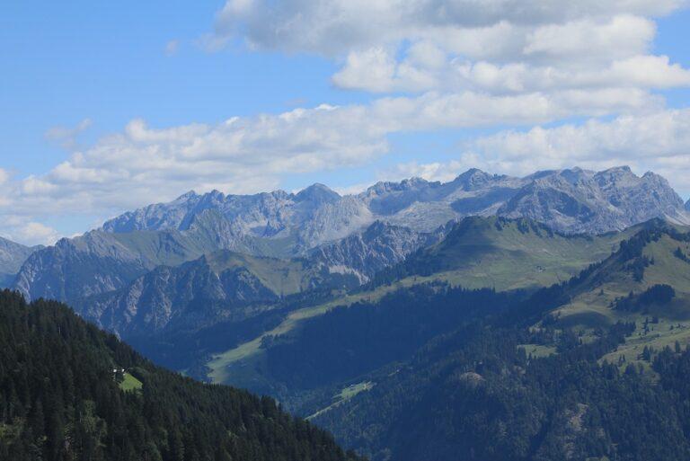 Gaßneralpe und Plansottalpe - Image 52