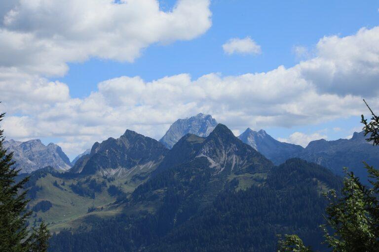 Gaßneralpe und Plansottalpe - Image 53