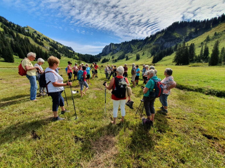 Tolle Wanderung zur Stongeralpe - Image 5