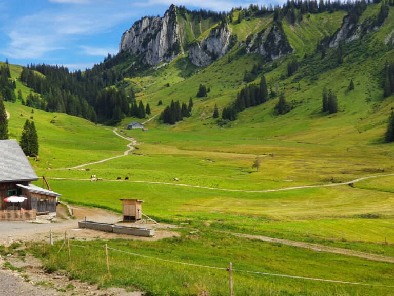 Tolle Wanderung zur Stongeralpe - Image 2