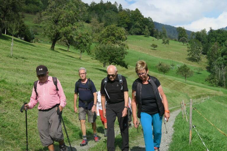 Wanderung nach Viktorsberg - Image 1